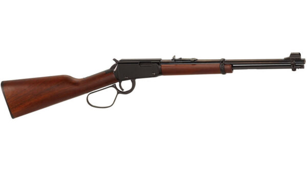 Rifle with Large Loop